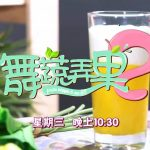 TV Voice Over – 舞蔬弄果2 on Channel 8